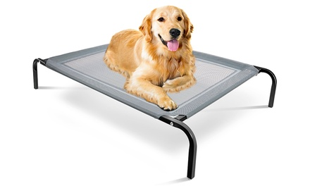 Elevated Steel-Framed Comfort Pet Bed