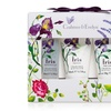Crabtree & Evelyn Iris Lotion, Cream, and Shower Gel Set (3-Pack)
