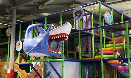 Play Centre Entry: One $5, Two $9.90, Three $14 or Four Children $19 at 123 Play Centre Up to $47.60 Value