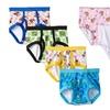 Paw Patrol Toddlers' Briefs or Panties (7-Pack)