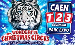 Grand Cirque de Noël de Caen: 1 place pour le Grand Cirque de Noël, catégorie et date au choix, dès 9,90 € au Parc des Expositions à Caen