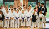 One-Month Access to Shotokan Karate Classes for a Child or Adult at Traditional Karate and Fitness (Up to 57% Off)