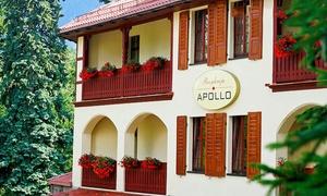 noclegi Karpacz Karpacz: pokój twin dla dwojga lub family dla rodziny z wyżywieniem w Rezydencji Apollo - wakacje