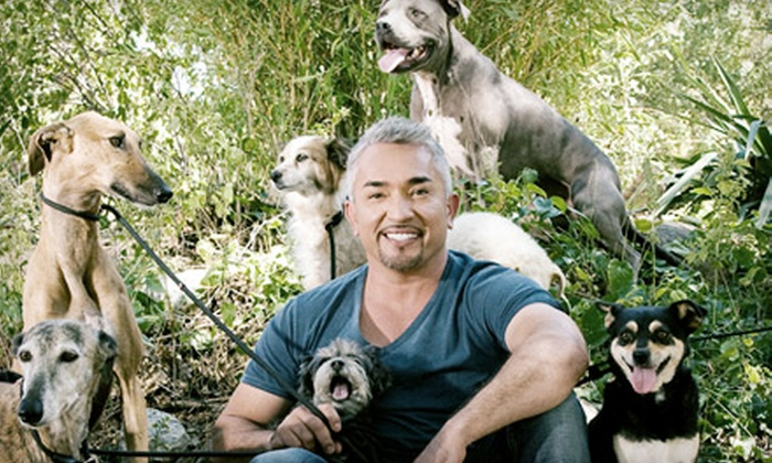 Cesar Millan Live! - The Fillmore Miami Beach at Jackie Gleason Theater : Cesar Millan Live! at Fillmore Miami Beach at Jackie Gleason Theater on Friday, June 14, at 8 p.m. (Up to $55 Value)