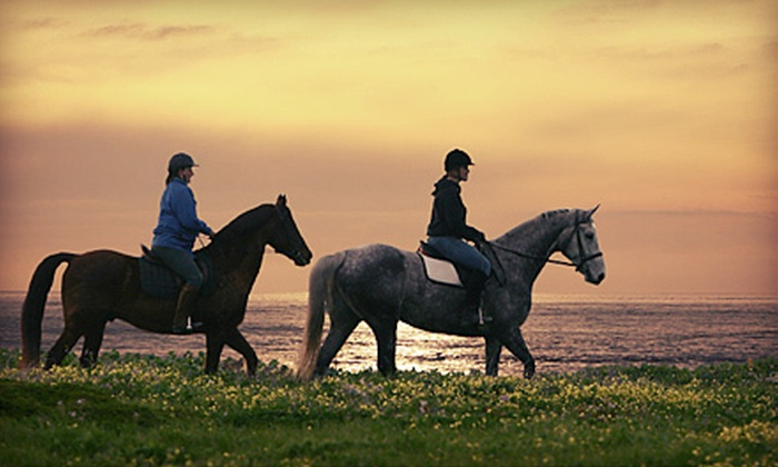 Blue Moons Riding School - Half Moon Bay: Horse-Riding Lesson and Drinks at Blue Moons Riding School in Half Moon Bay (Up to 71% Off). Four Options Available.