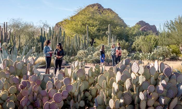 membership desert botanical garden groupon