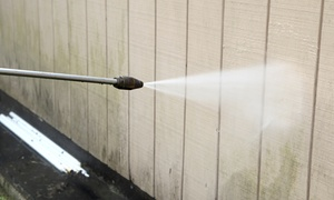 Worker Bee's Home Services: Up to 50% Off Power Washing at Worker Bee's Home Services