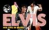 2 Tickets German Elvis Tribute