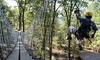 Virginia Canopy Tours - Shenandoah River State Park: Zip Line Adventure Tour (2.5 hour) for One Person at Virginia Canopy Tours (Up to 34% Off)