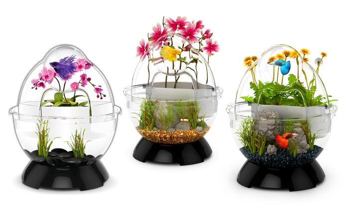 Biobubble fish tank with bubble tunnel groupon for Bubbles in betta fish tank