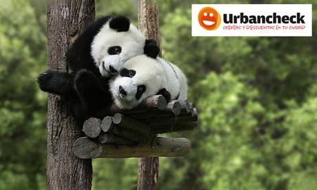 Suscripción anual al talonario Urbancheck por 12,90€ y una entrada gratuita a Faunia o Zoo Madrid  por 12,90 €