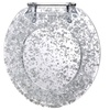 Show Me the Silver Heavy-Duty Resin Toilet Seat