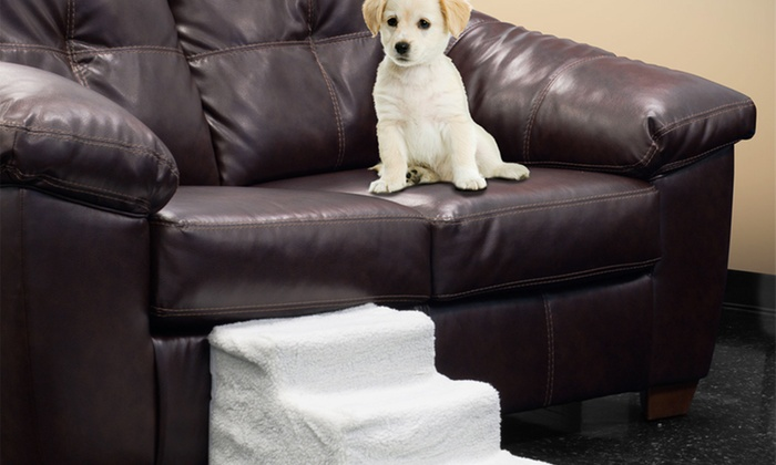 Deluxe Doggy Steps Pet Stairs with Washable Cover: $24.99 for Deluxe Doggy Steps Pet Stairs with Washable Cover ($56.99 List Price). Free Shipping and Returns.