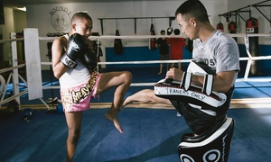 Round 5 Fitness: Four Weeks of Unlimited Martial Arts Classes at Round 5 Fitness (63% Off)