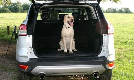 Rejilla divisoria protectora de mascotas para coche