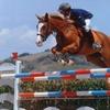3 o 5 lezioni di equitazione vicino al mare
