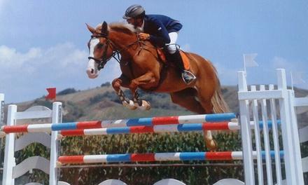 3 o 5 lezioni di equitazione vicino al mare per una o 2 persone da Tevere Time Horse Club (sconto fino a79%)