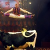 Big Apple Circus – Up to 40% Off Show