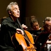 Modesto Symphony Orchestra – Up to 55% Off  Concert
