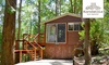Montville: 2-5-Night Treehouse Retreat with Dinner