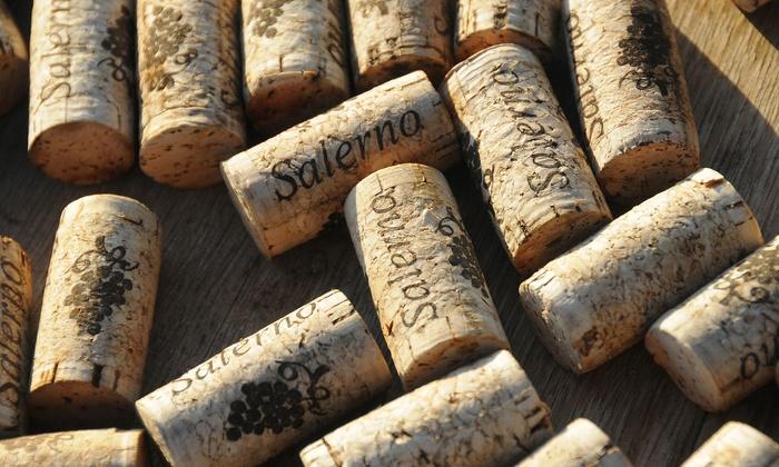 Salerno Winery - Ramona: Up to 52% Off Wine Tasting at Salerno Winery