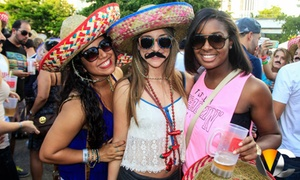 Wynwood Cinco De Mayo Celebration 2016: Wynwood Cinco De Mayo Celebration 2016 on May 5 at 4 p.m.