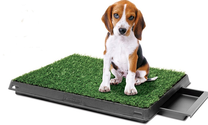 PetZoom Indoor Dog-Relief Systems: PetZoom Pet Park Indoor Dog-Relief System or Deluxe Dog-Relief System (Up to 54% Off). Free Shipping.