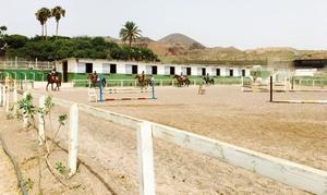 Club Hípica Canaria: 1 o 3 meses de clases de hípica para adultos o niños desde 34,90 € en Club Hípica Canaria