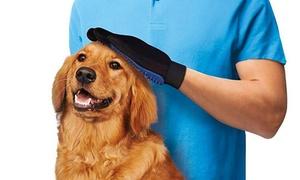 Gant de brossage chien/chat