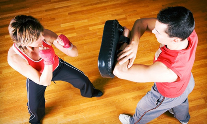 Academy of Self Defense - Santa Clara: One or Two Months of Unlimited Krav Maga or MMA Classes at Academy of Self Defense (Up to 66% Off)