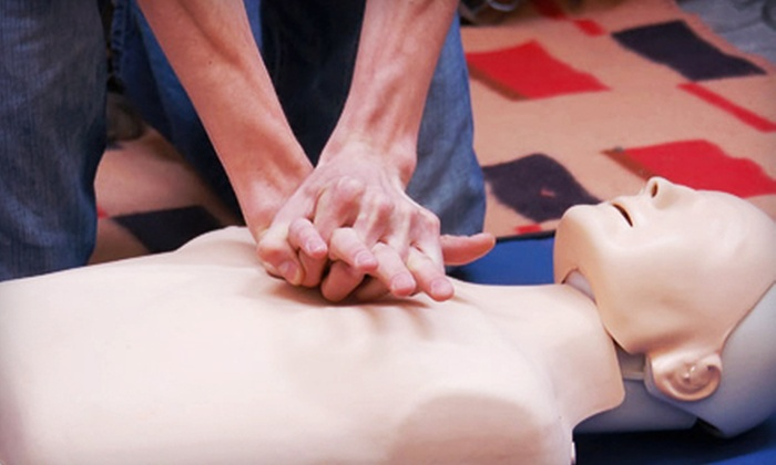 The Lifesaving Team - Central St. John's: $39 for CPR Level C and AED Recertification at The Lifesaving Team ($80 Value)