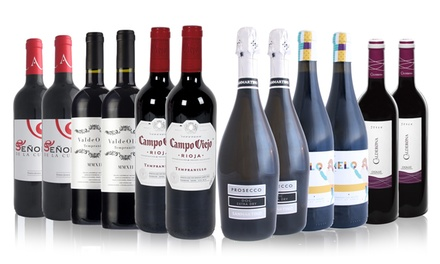 San Jamón We Will Red You Collection of 12 Bottles of Wine