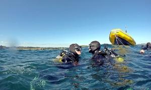 Speedy Water: Bautismo de buceo desde embarcación para 1 o 2 personas desde 29,95 € en Speedy Water