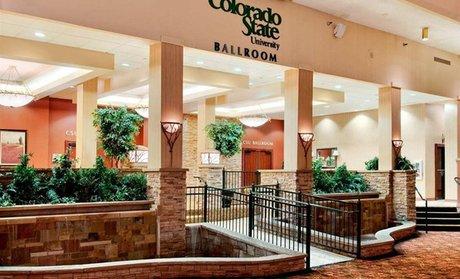 Shop Groupon Hilton Fort Collins