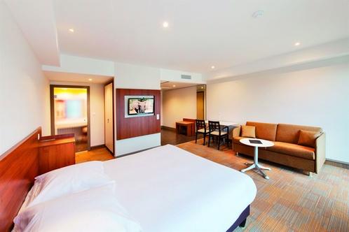 hotel lyon m tropole spa lyon. Black Bedroom Furniture Sets. Home Design Ideas