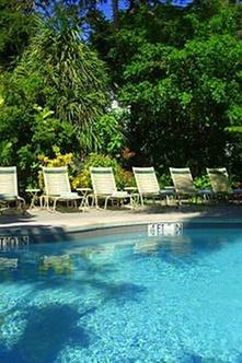 the banyan resort key west. Black Bedroom Furniture Sets. Home Design Ideas