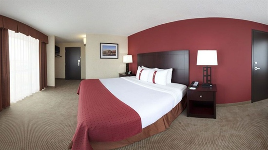 Holiday Inn Knoxville World's Fair Park