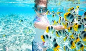 Aqua Evasion: Ballade en bateau et randonnée palmée dans les calanques de la côte bleue (4h) pour 1 personne à 24€90 chez Aqua Evasion