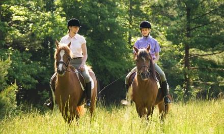 Gleneagles Equestrian Centre