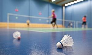 Bene Sport: 1 lub 2 godziny gry w badmintona od 19,99 zł w centrum Bene Sport (do -50%)