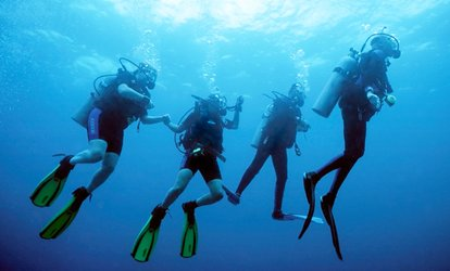 image for Discover <strong>Scuba</strong> Course for One or Two at Patriot <strong>Scuba</strong> (Up to 51% Off)