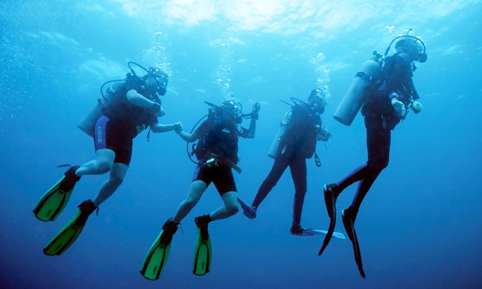 Scuba Zone  - Scuba Zone LLC: One or Two Discover Scuba Lessons and a $50 Credit Toward Certification at Scuba Zone (51% Off)