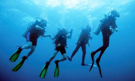Bautismo de buceo o curso PADI de open water diver para una persona desde 29 € en Buceo El Bajón Oferta en Groupon