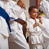Up to 76% Off Unlimited Pass at United Family Martial Arts