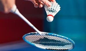 Powershot - Alsace Nord Foot Indoor Badminton Padel Bubble Foot: 1h de badminton simple ou double pour 2 ou 4 personnes dès 9,90 € avec Powershot - Alsace Nord