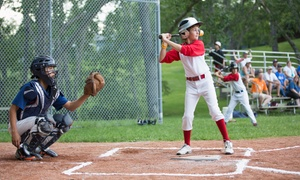 Evolution Baseball Academy: $12 for $59 Worth of Products — Evolution Baseball Academy