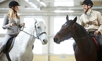 1 o 3 meses de clases de equitación para todos los niveles desde 19,95 € en Hípica Riding School