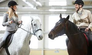 HIPICA RIDING SCHOOL: 1 o 3 meses de clases de equitación para todos los niveles desde 19,95 € en Hípica Riding School
