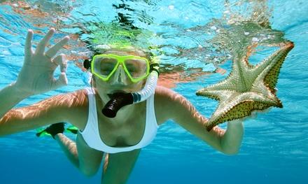 Alquiler de equipo de Snorkel o tour guiado para 2 o 4 personas desde 4,99 € en Puertobuceo