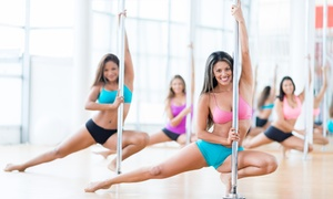 Pole Dance Academy: 60 Min. Schnupperkurs Poledance, opt. inkl. 120 Min. Pole-Trick-Workshop, bei Pole Dance Academy (bis zu 77% sparen*)